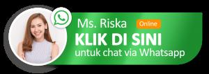 whatsapp-logo-btn